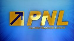 Revoltă în PNL după racolarea unui primar PSD
