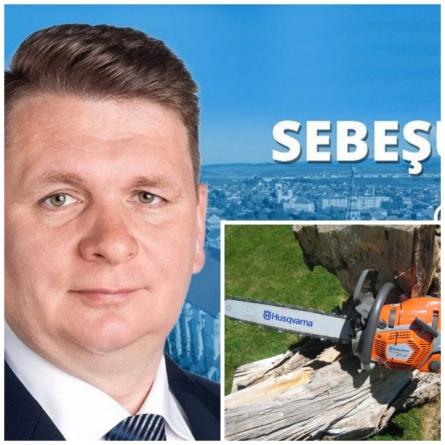 Primăria Sebeș va rade 500 de camioane de lemn