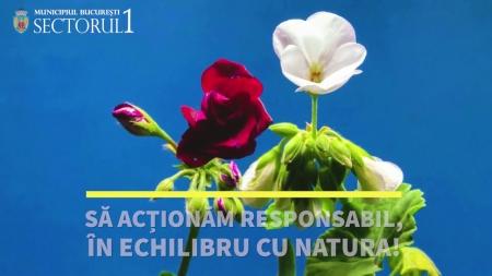 Acționăm responsabil, în echilibru cu natura – Primăria Sector 1