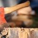 Revoltător: mafia lemnului atacă în plină zi!