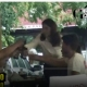 Candidata USR-Plus la sector 4 face ravagii la volan (filmări inedite)