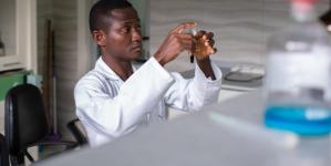 Undă verde de la OMS: COVID-19, tratat cu ierburi africane