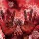 Pneumolog, dspre SARS-CoV-2: Nu e creat de natură
